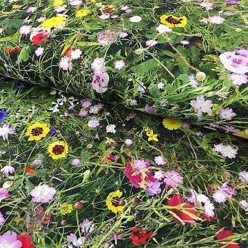 Decoration fabric Meadow digital print