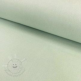 CANVAS HEAVY mint