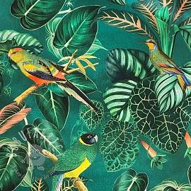 Decoration fabric Calathea leaves digital print