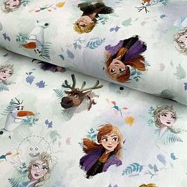 Decoration fabric Frozen Characters digital print