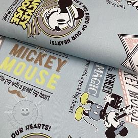 Decoration fabric Mickey Mouse Film blue digital print