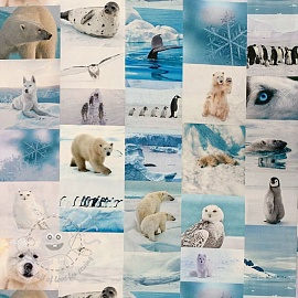 Decoration fabric South Pole digital print