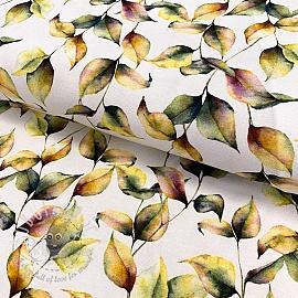 Jersey Canopus design A digital print