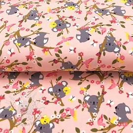Jersey Koala dream pink