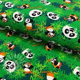 Jersey KUNG FU PANDA Hide and seek dark green digital print