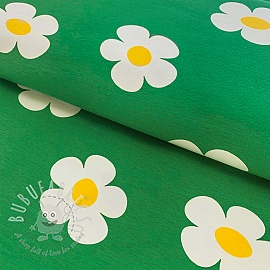Jersey Marguerite green