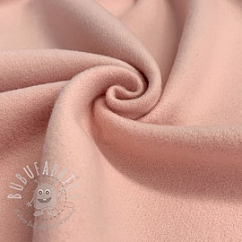 SOFTCOAT rose