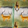 Jersey Gazelle digital print
